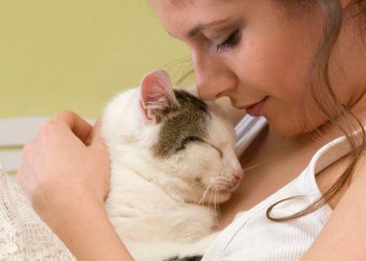 hug cat woman