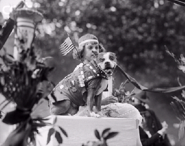Sgt Stubby Dog Parade